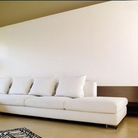 Economical White Color Interior Wall Emulsion Paint