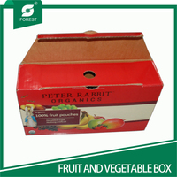 2016 PRINTED APPLE FRUIT PACKAGING BOXES SUPPLIER