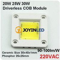 No need driver IC integrated AC220V High power AC led cob chip 10W 20W 30W 50W led module