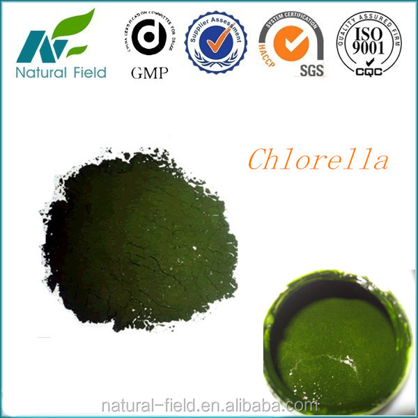 best quality chlorella vulgaris powder