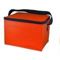 BSCI Factory Audit 4P insulated Lunch Box Cooler Bag for wholesale