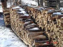 pine,birch,oak,acasia, rubber wood,beech fire wood