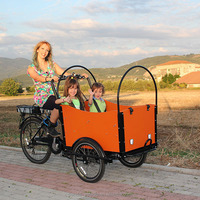 2015 hot sale 3 wheels family electric cargo tricycle / trike / bike / bicycle for children