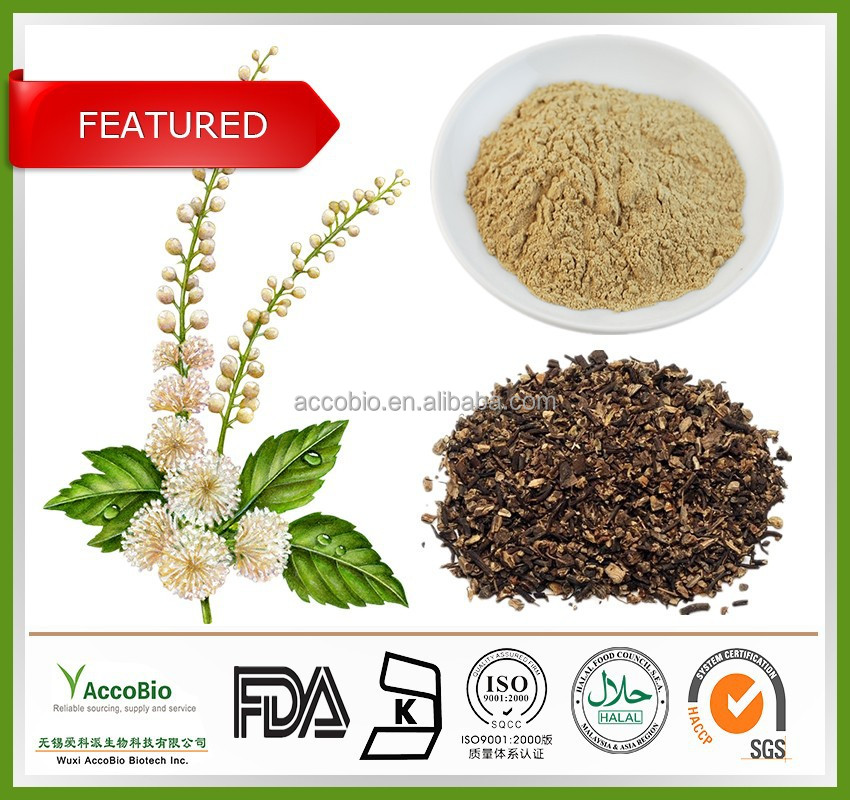 100% Natural Black cohosh extract, Black cohosh herb extract, Black cohosh extract powder