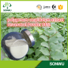 Factory supply natural polygonum cuspidatum extract resveratrol Powder 98% hplc ISO GMP