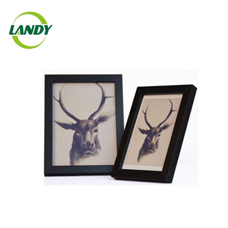 New design hot selling wooden photo frames with two photo