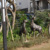 Garden Deer Decoration Bronze Animal Craft Statue