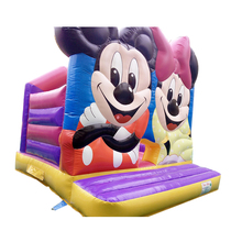 Commercial Inflatable Bouncy House bouncy castle With Famous Cartoon