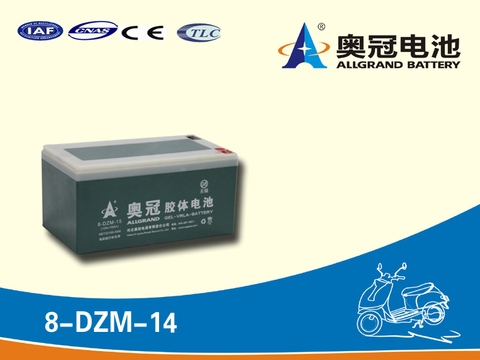 12v 14ah 6-dzm-14 dzm battery gel/agm battery