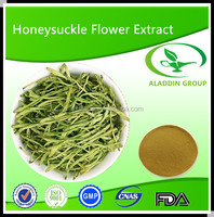 High quality chlorogenic acid from HoneySuchle Flowers /Flos Lonicerae