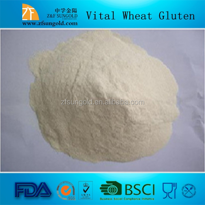 Best Vital Wheat Gluten price made in china