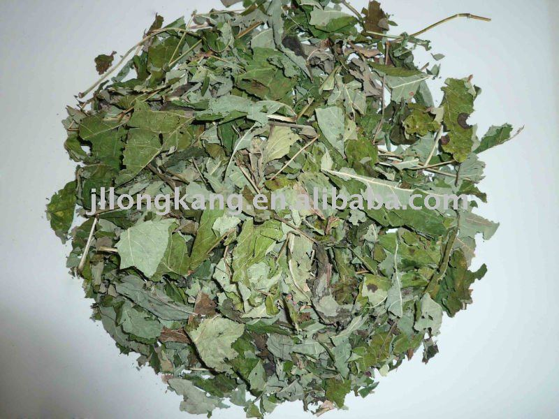 The dried leaves of Epimedium Herb