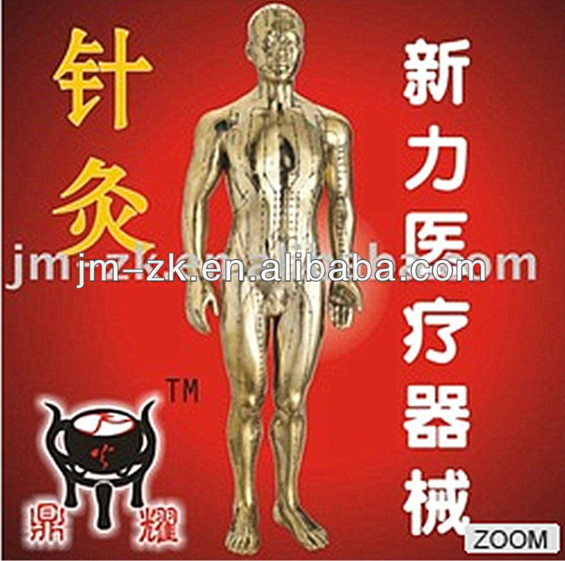 male &female body model for acupuncture