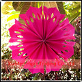 "2015 New 12"" Fuchsia Pinwheel Paper Flower Rosettes Hanging Decoration"