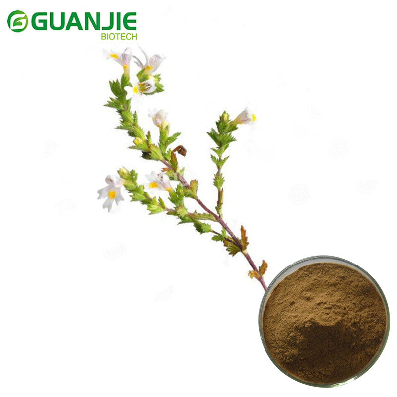 Best Quality Eyebright Extract Powder