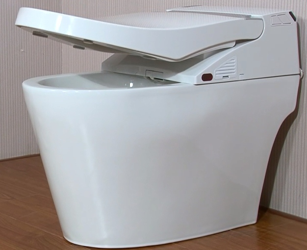 automatic one piece toilet electronic bidet