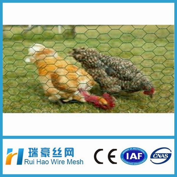 "1/4"",3/4"" Cheap Chicken Wire/hexagonal decorative chicken wire mesh"