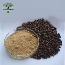 Factory Supply High Quality Rutin Buckwheat Seed Extract Powder