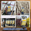 Outside Statues Sale Summer Outdoor Decorations