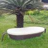 Rattan Wicker Swimming Pool Sunbed With