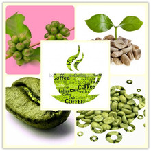 Factory direct supply with competitive price 100% Natural 50% Chlorogenic acid Green Coffee (HPLC)