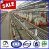 Quality automatic galvanized layer chicken cages/poultry chicken cage farm equipment