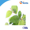 IOTA2000 Agricultural silicone surfactant for low foam surfactants