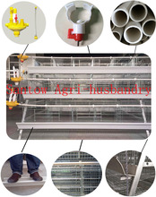 A Type And H type Cage Type And Chicken Use Battery Cages Laying Hens Sell In Algeria
