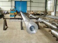 vertical rotor shaft