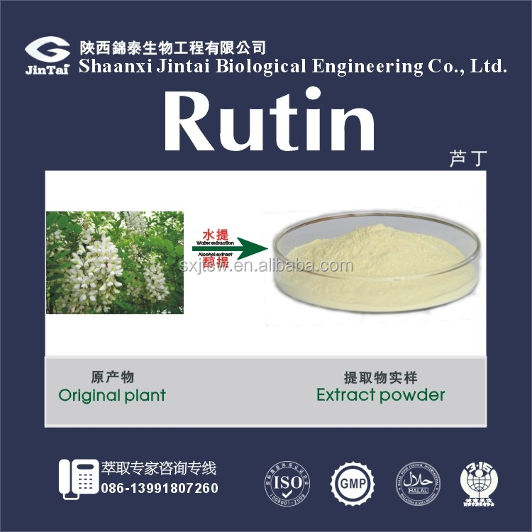 ISO certificated Competitive price Rutin Extract powder