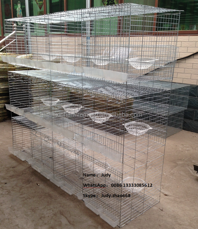 layer pigeon breeding cages