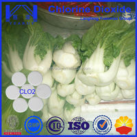 Hot Sale Vegetable Disinfection For Safe and Healthy Vegetable Recommend by WHO