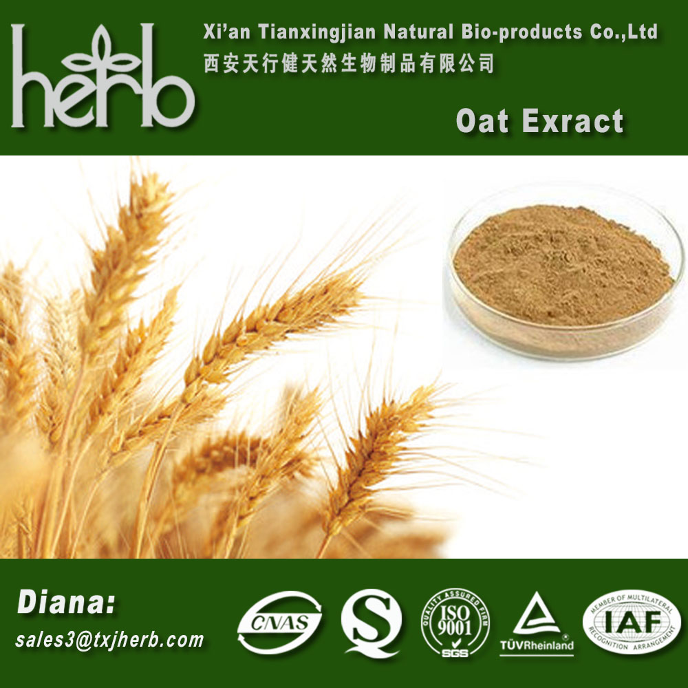 organic and natural oat extract/ oat protein 20%-90% Purity CAS 9051-97-2