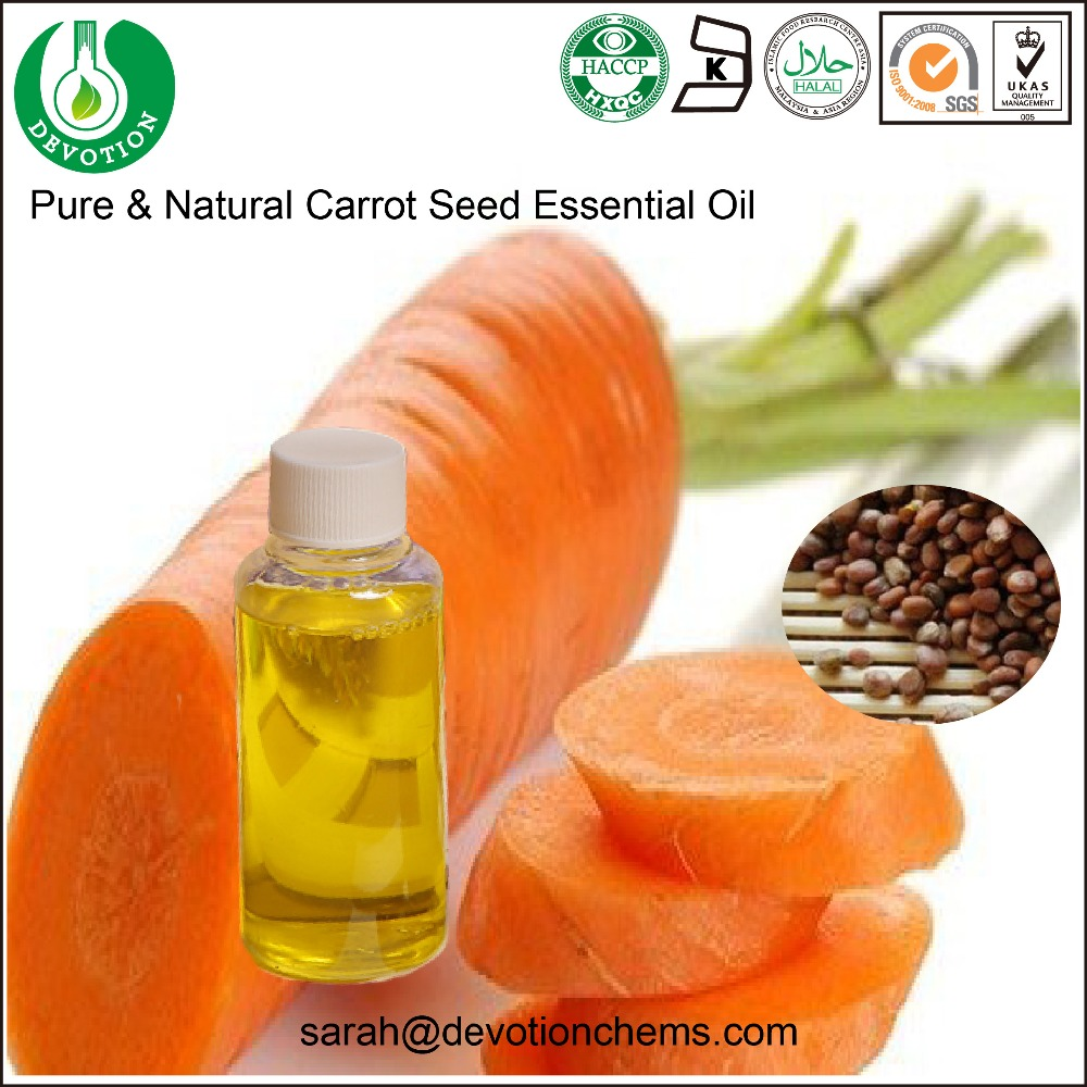 Essential Oil Bulk Wholesale Carrot Seed Oil