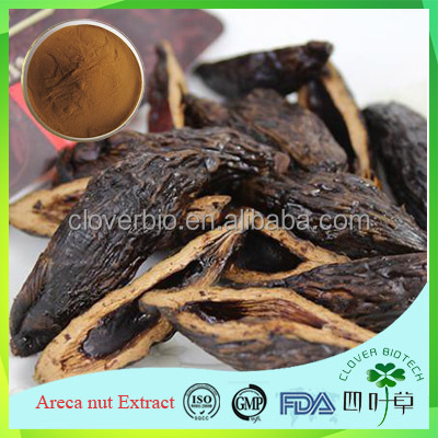 Pure natural herbal extract Arecolin 50% Pericarpim Arecae extract powder, Areca nut extract