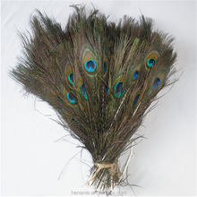 30-35 inch peacock tail feather hobby lobby peacock feathers