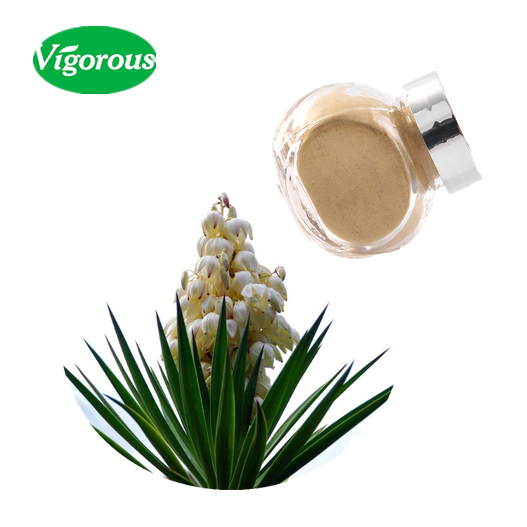 100% pure yucca p.e./yucca schidigera extract powder/yucca plant extract