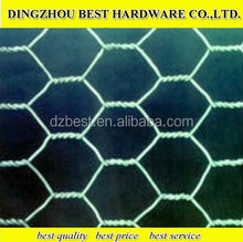 Weave Wire Mesh Type and Galvanized Steel Wire Material galvanized hexagonal wire mesh for zoo bird cages