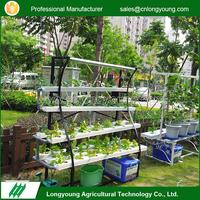 2017 Professional Without Soil Custom Hydroponic