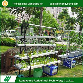 2017 Professional without soil custom hydroponic systems home garden