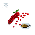 Top-sale Factory supply Schisandra Chinensis Extract/Schizandrin B HPLC/Schisandrins extract
