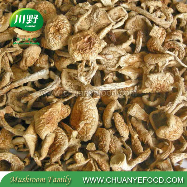 2016 High Quality Dried Nameko Pholiota Nameko Dried Mushroom