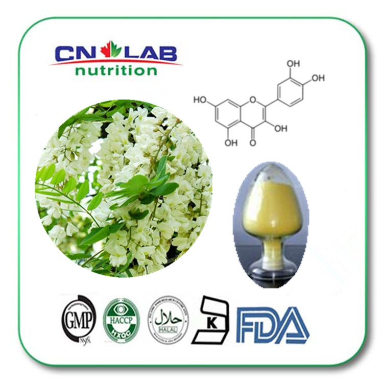 Factory supply quercetin powder quercetin price in low /quercetin plant extract bulk