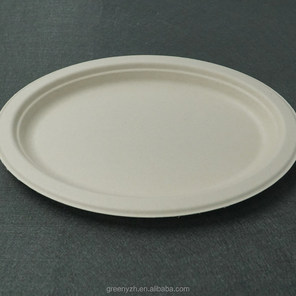 "10""x8"" eco-friendly biodegradable bagasse disposable dinner Plate"