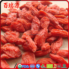 Goji berries protein where buy goji berries goji berry antioxidant