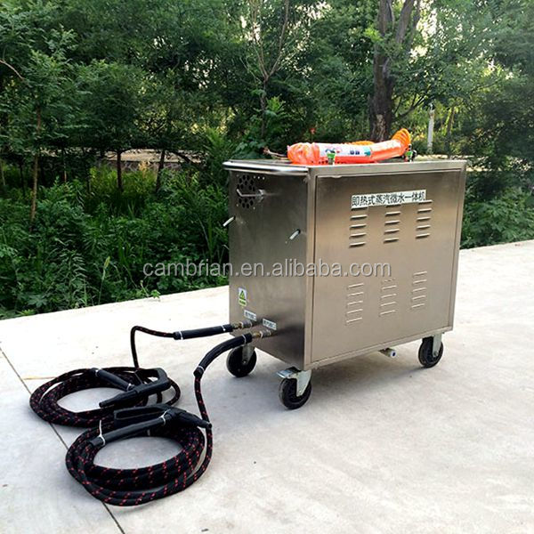 Stainless steel high pressure car steam cleaning machine with best price