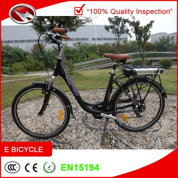 electric bicycle price bicicletta elettrica with battery lithium for sale