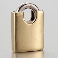 Stainless steel color cast iron padlock