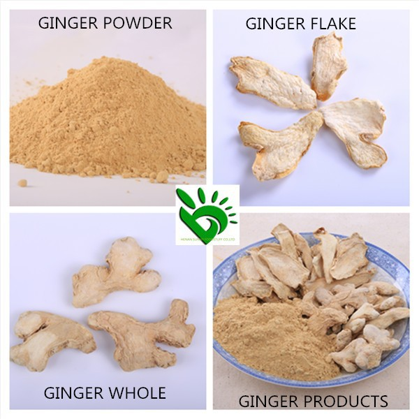 High Quality Dried Ginger Powder/Ginger Flakes/Ginger Whole with Best Price