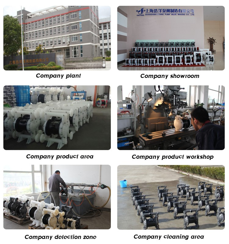 High Quality Chemical Pumps Air-operated Pumps With Santoprene Diaphragm
